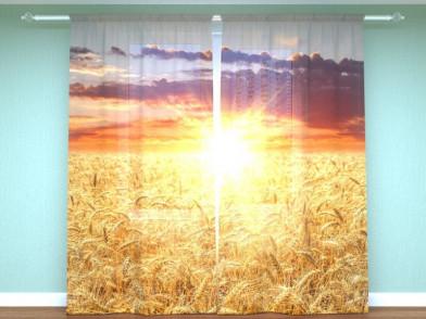 """Фотоштора """"Пшеничное поле"""""""