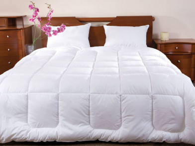 Одеяло Arctique